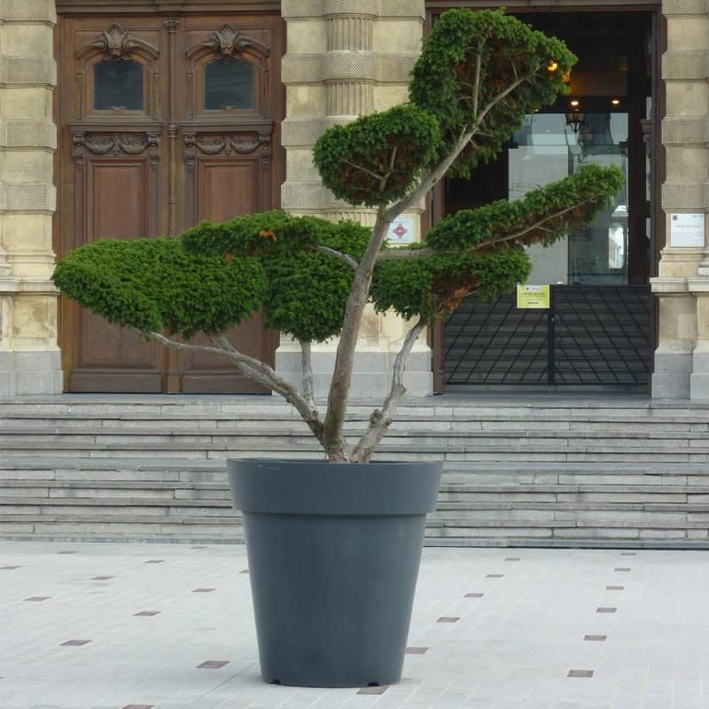 amenagement-pot-de-fleurs-plastique-extravase-Les-Serruriers-du-Paysage