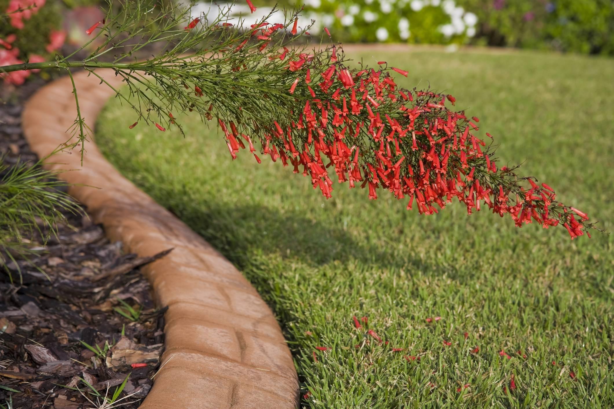 Comment aménager une bordure de jardin