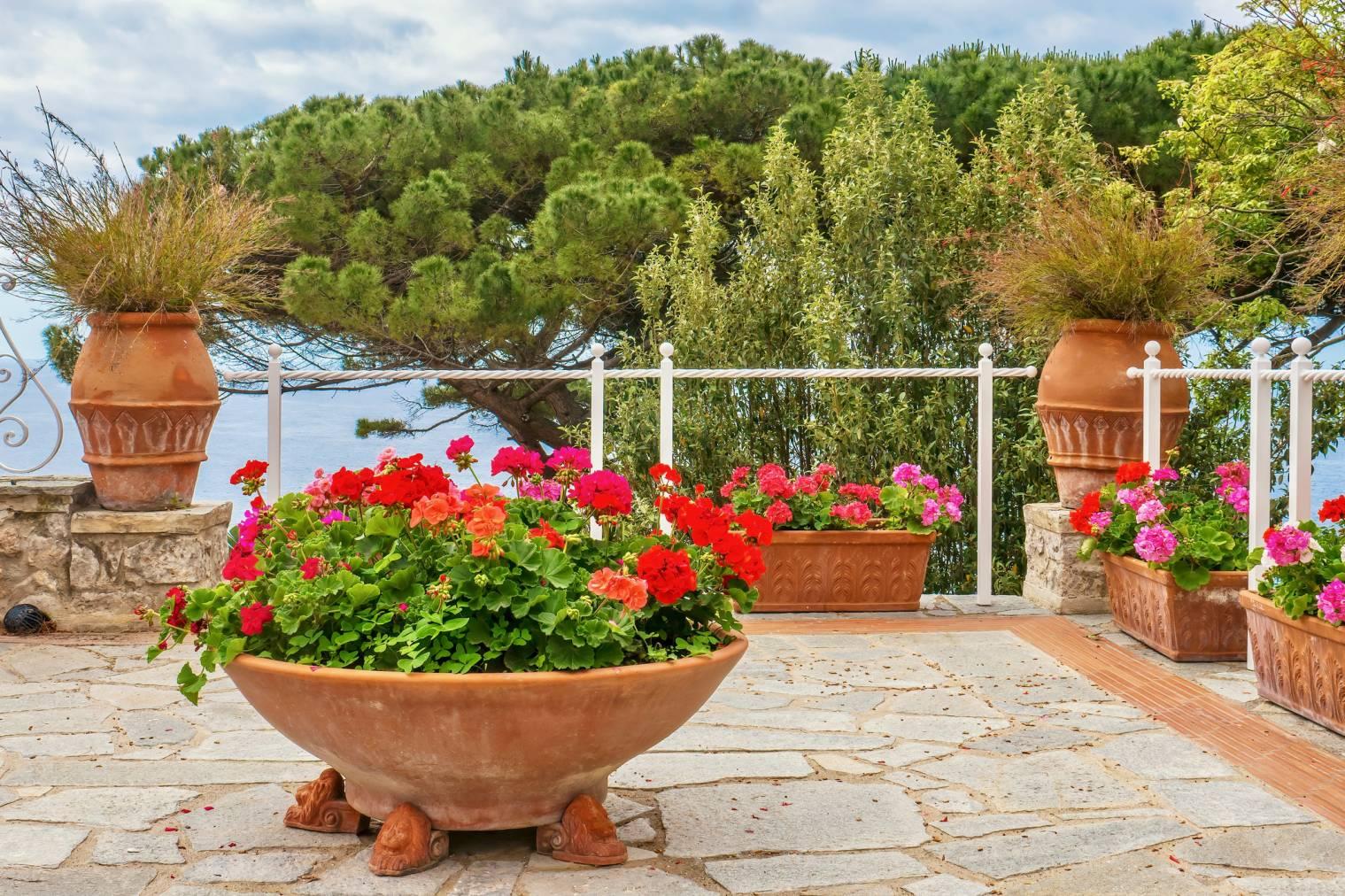 déplacer-pots-de-fleurs-lourds-solutions